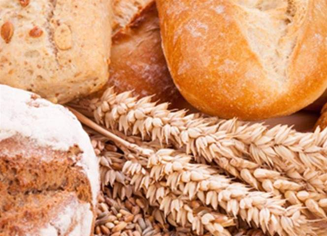 foodware 365 bread