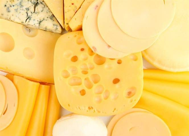 foodware 365 cheese