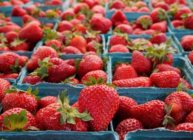 foodware 365 strawberries
