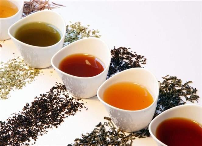 foodware 365 tea